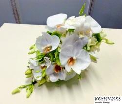 Roseparks-Bridal