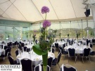 Roseparks - Table Centres-at-Dynamic Earth