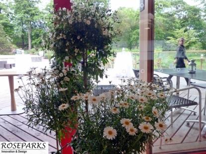 Event - Royal Botanic Gardens
