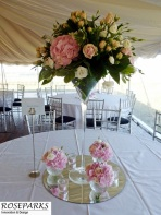 Wedding-pics-at-Garleton-Lodge