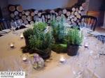 Event- Queen Anne, Edin Castle